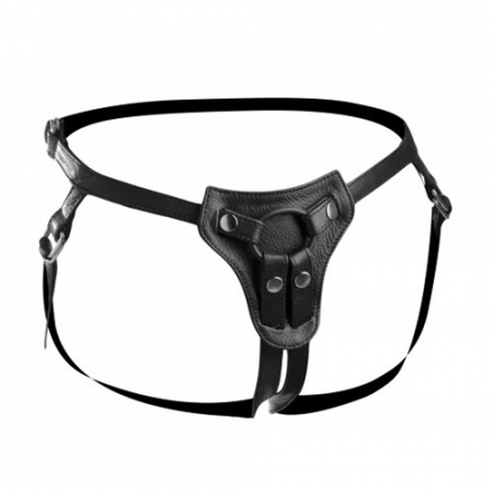 Image of All Access Leder Harness