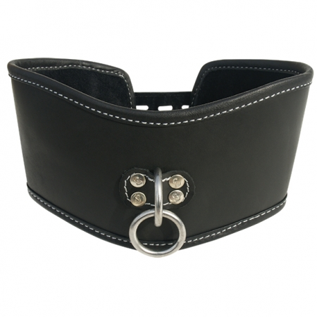 Image of Edge Soft Leather Posture Collar